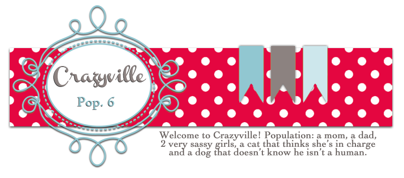 Welcome to Crazyville