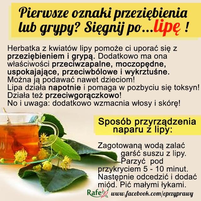 Właściwości lecznicze kwiatów lipy