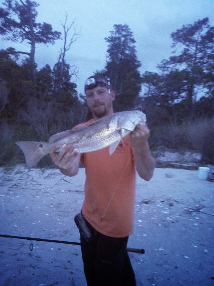 Fishing hunting and life on the chesapeake bay spring for How to cook drum fish