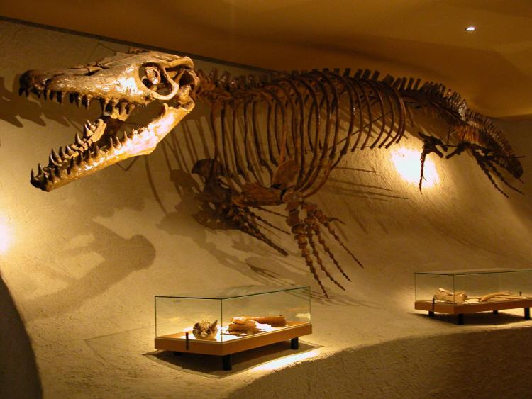 Los 10 animales prehistóricos más aterradores.