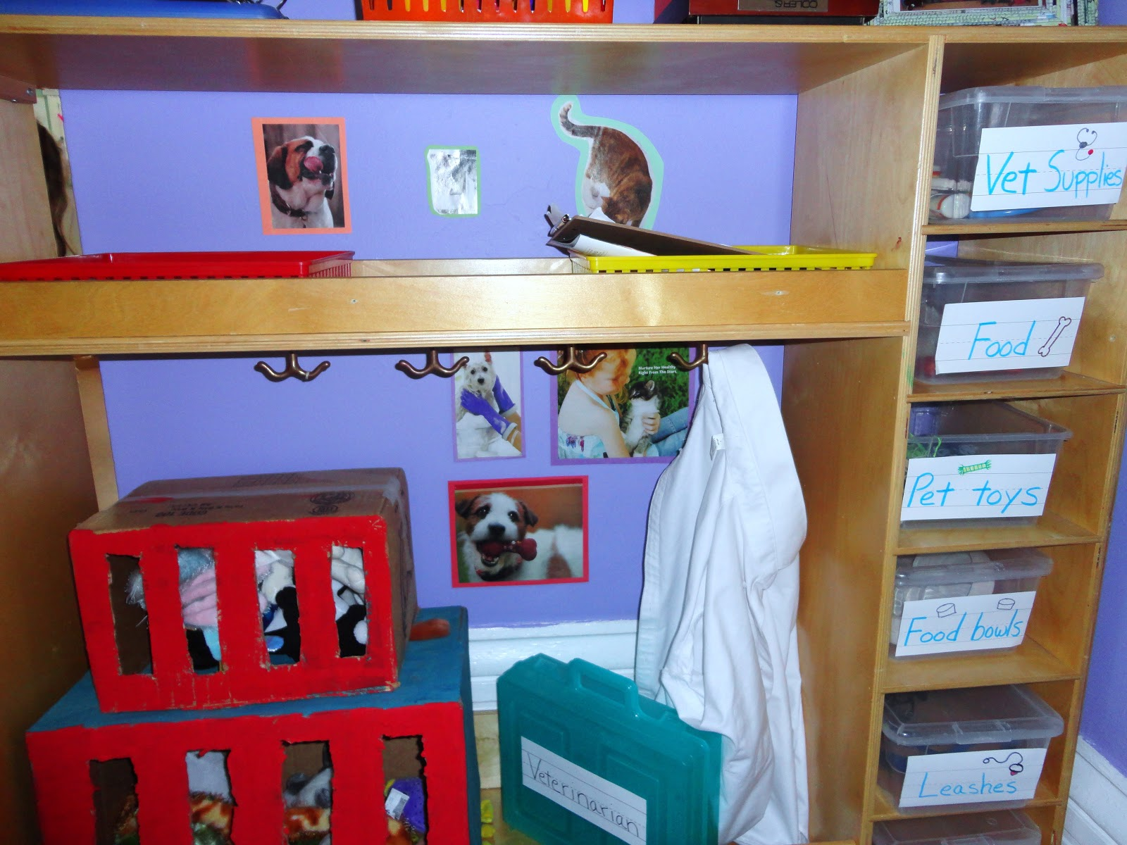Classroom Pet Ideas ~ My catch a star classroom p is for pets
