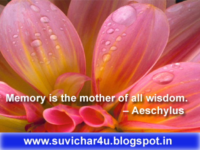 Memory is the mother of all wisdom