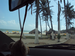 PRAIA DA LAGOINHA
