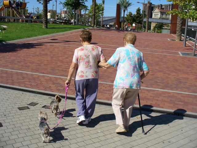 perros,ancianos,mascotas,Bilbao,abandoibarra,terapeutas