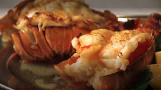 Healthy Maine Lobster Lasagna | Healthy Sea Foods Lobster Recipe Tips