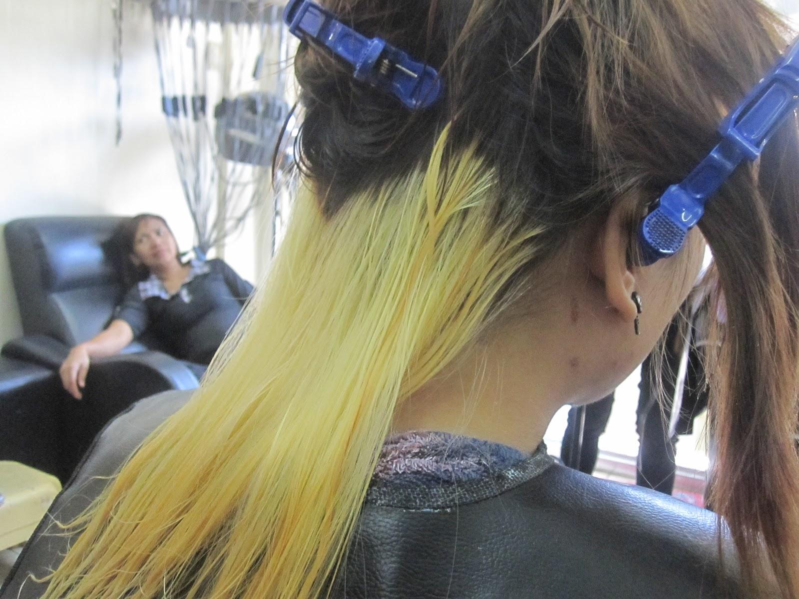 Lizc S Litter Box 2 Tone Hair Color