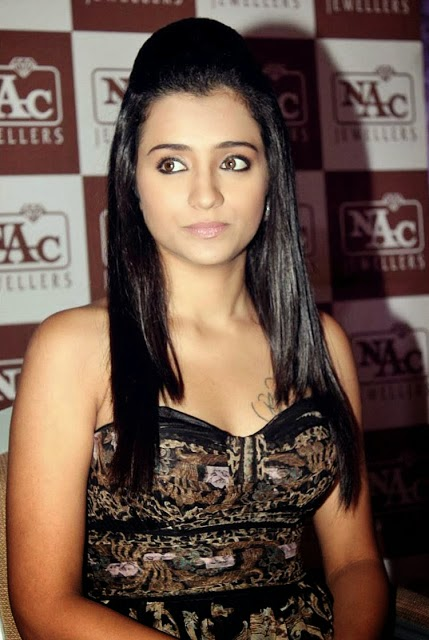 Trisha Hot boobs photo