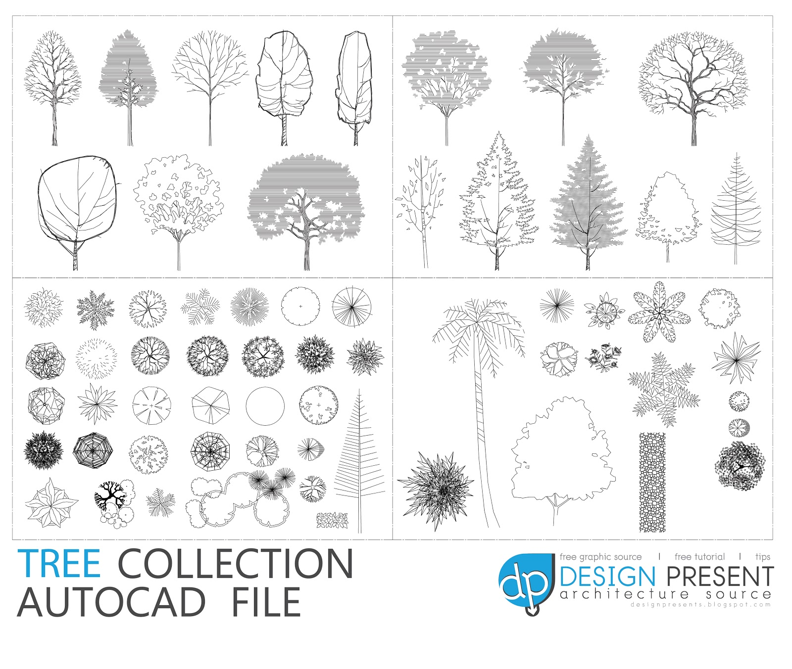 Free Cad Trees Plan View Sketch Coloring Page