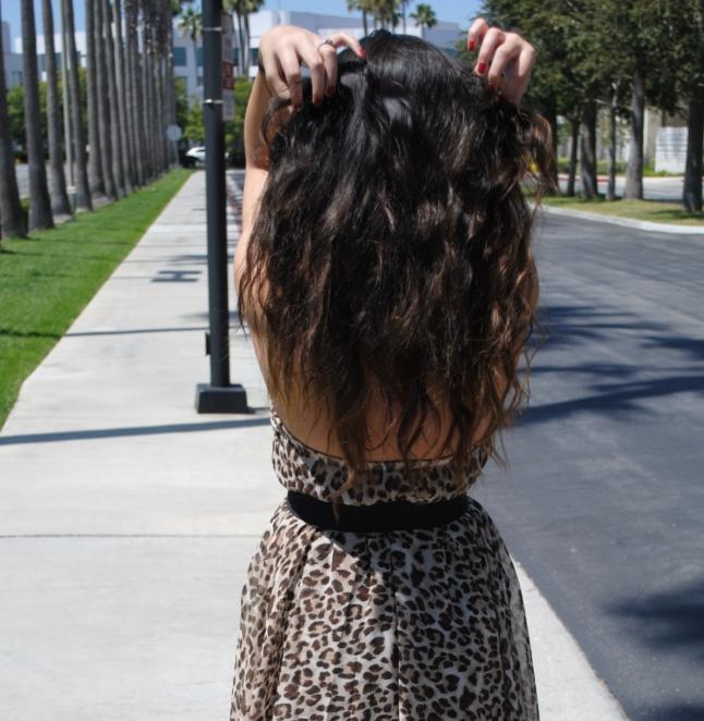 Leopard Dress, Queen's Wardrobe