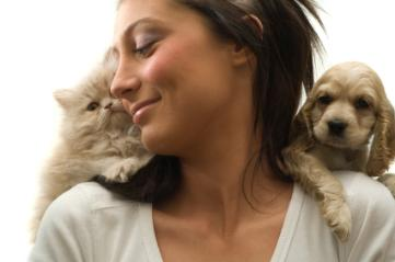 Do Cats Have More Dander Than Dogs