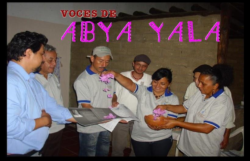 Voces de Abya Yala