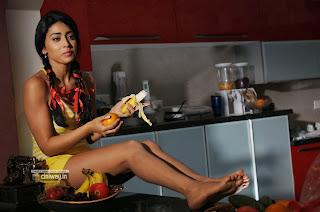 Shriya-Saran-Stills-in-Pavithra-Movie