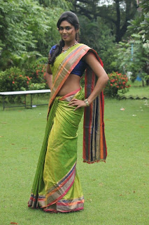 Actress Manisha Yadav  saree stills 005.jpg