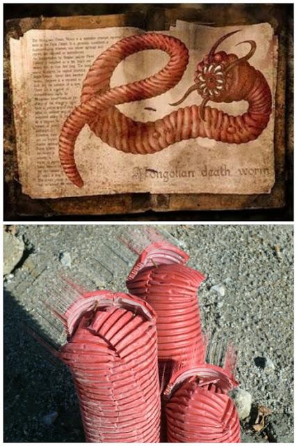 gusano rojo de la muerte