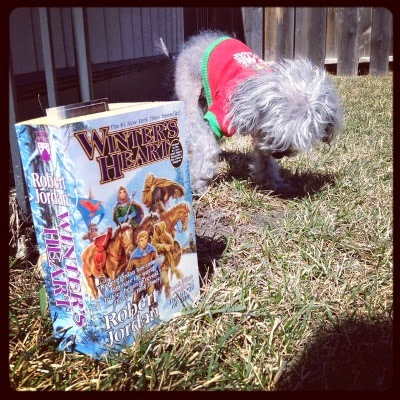 Murchie examines the grass, one front paw raised. He wears the same shirt described above. In front of him, a paperback copy of Winter's Heart stands upright. Its cover features a group of white people in old fashioned dress riding through a snowy landscape.