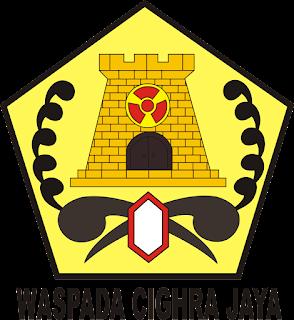 Logo Kizi Nubika