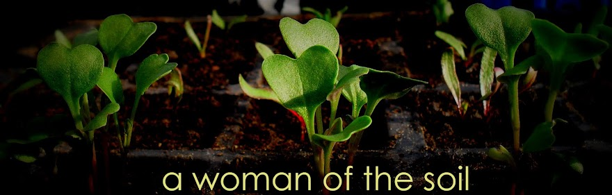 A Woman of the Soil