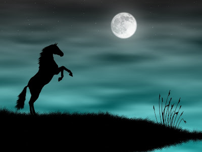 Black Horse Wallpaper Moonlight