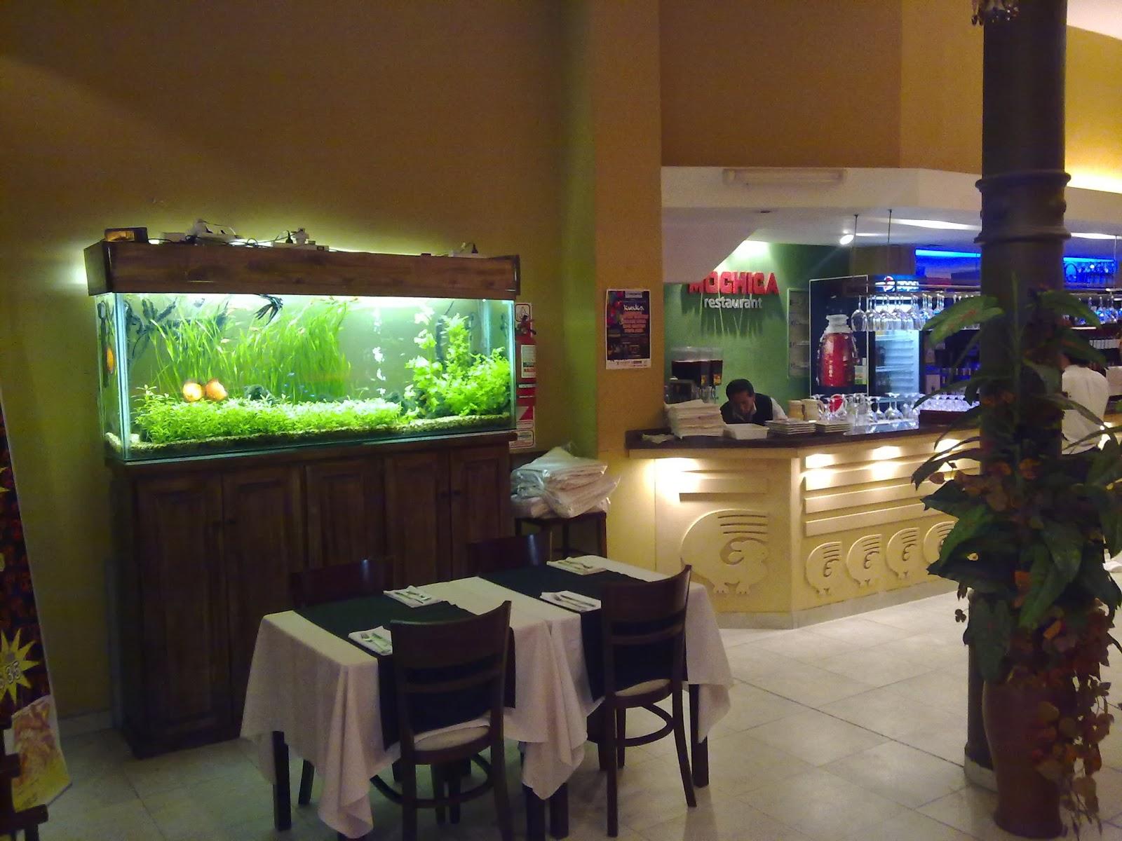 Pecera gratis para tu negocio acuario decorpez - Peceras de diseno ...