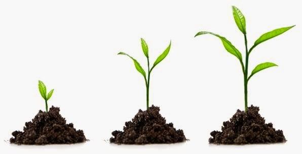 How To Identify Quick Business Growth