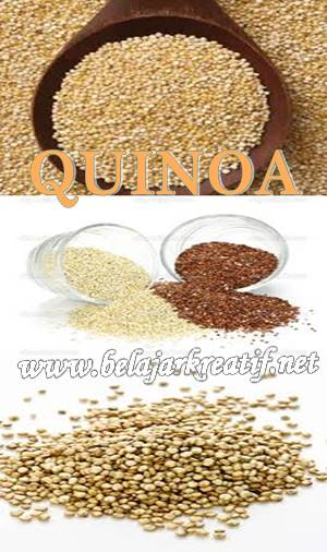 gambar biji quinoa, khasiat dan manfaat super quinoa