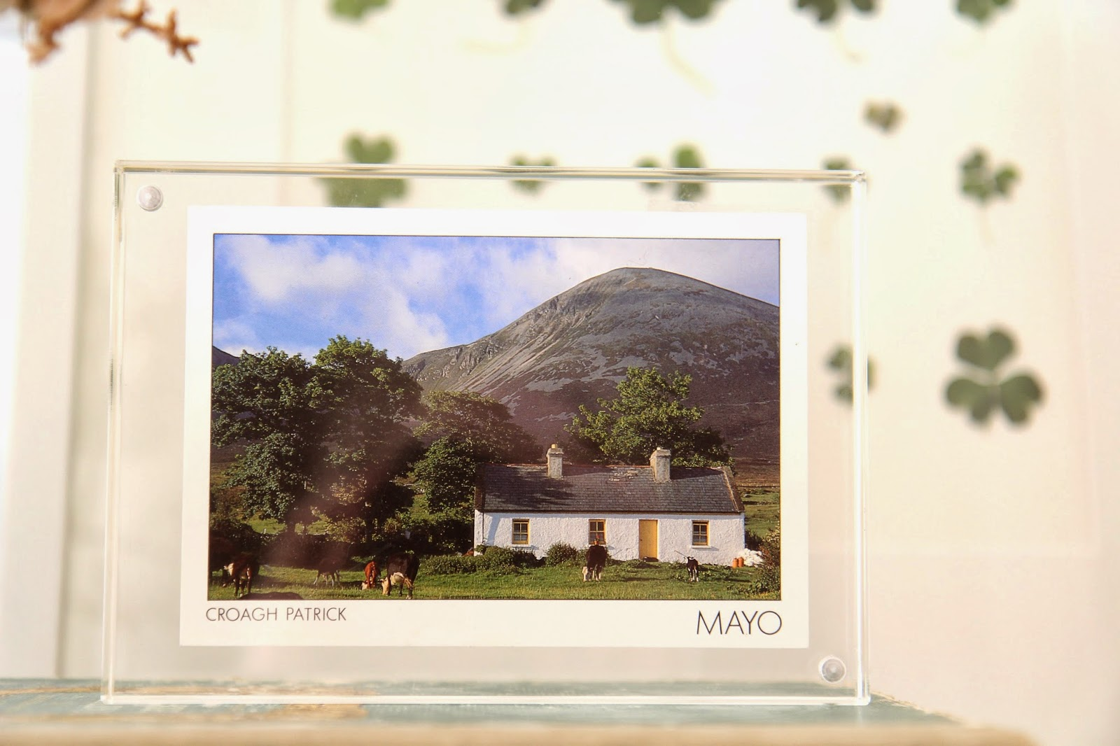 St. Patrick's Day Vignette Ireland Postcard