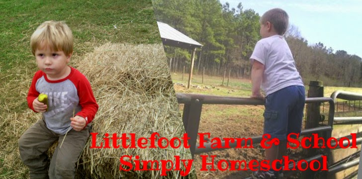 Littlefoot Farm & School