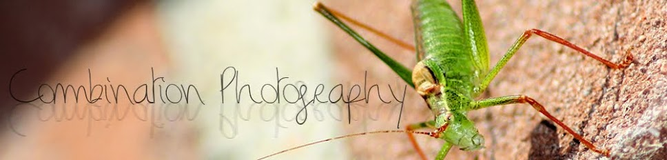 Combination Photography