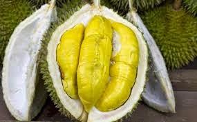 inilah sejuta manfaat buah kulit biji durian