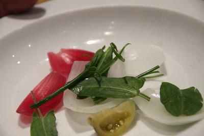 cebollas encurtidas, tomates encurtidos y diferentes hojas y plantas. Blog Esteban Capdevila