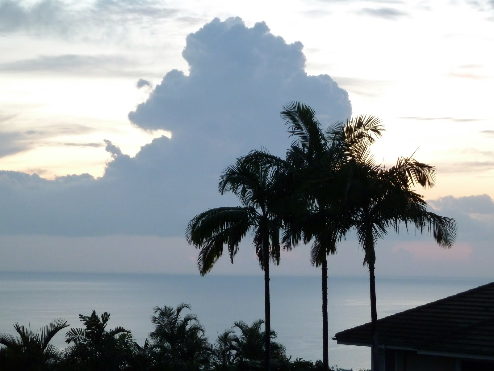 Matching clouds and palm trees, Kailua-Kona