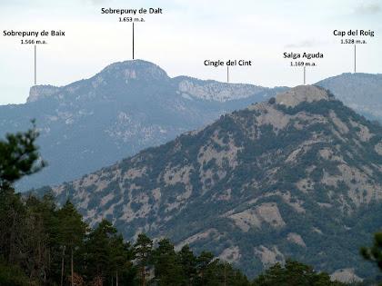 Aproximació als vessants de migdia de la Salga Aguda i del Sobrepuny