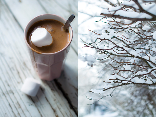Orange Hot Chocolate with Coriander Seed