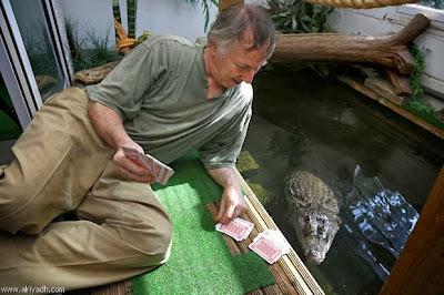 بريطاني أنفق 40 ألف دولار على منزله ليعيش فيه مع تمساح