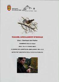 taller d'anellament d'ocells