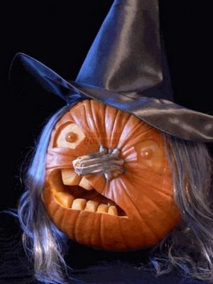 Pumpkin Funny Pictures Top Worlds