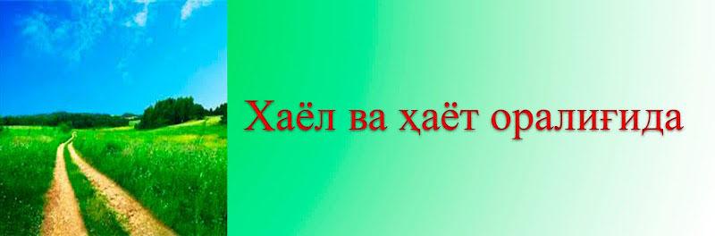 Хаёл ва Ҳаёт оралиғида