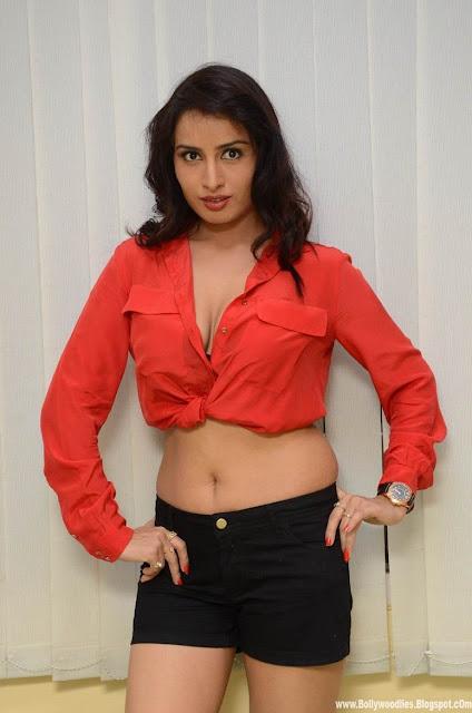 Ananya Thakur Latest Indoor Hot Photoshoot 2013 indianudesi.com