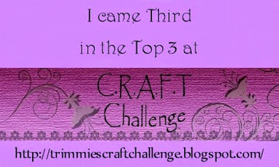CRAFT Top 3