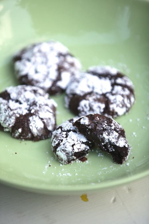 ... Ooey Gooey Deep Dark Chocolate Fudge Cookies {Gluten Free, Dairy Free