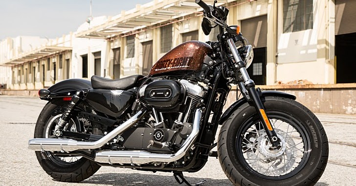 Harley-Davidson 2014 Forty Eight in All Its Splendor