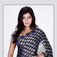 hot sexy decorative Vinny ethnic saree photo shoot