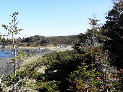 View of Tickle Inn at Cape Onion, from Treena's Trail