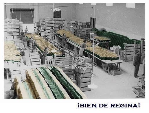 """Producción de Sidra """"La Reginense""""."""