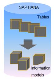 Hana Information Model