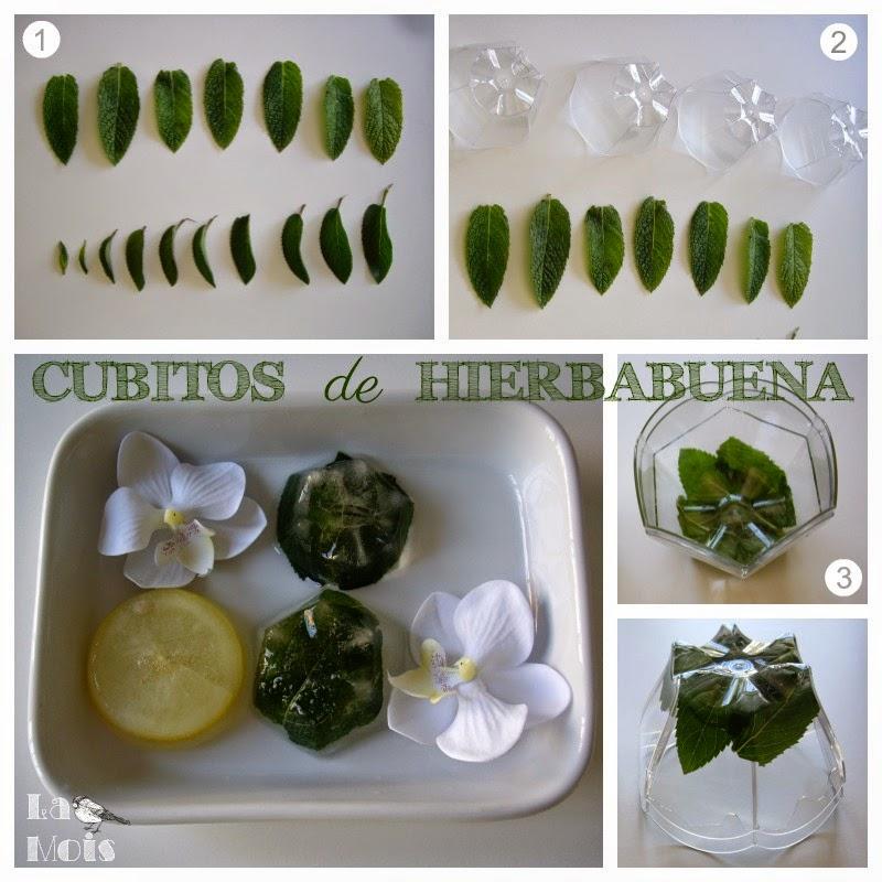 cubitos de hierbabuena