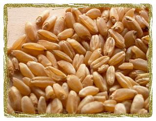 il segreto è la farina...