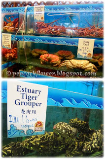 Lobsters, king crabs and estuary tiger grouper