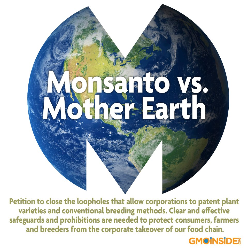 monsanto bp ethics Start studying business ethics case studies (1-10) learn vocabulary, terms, and more with flashcards, games, and other study tools.