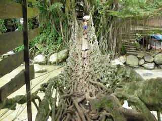 jembatan akar,jembatan akar sumatera utara,jembatan aka, wisata alam, sejarah jembatan akar